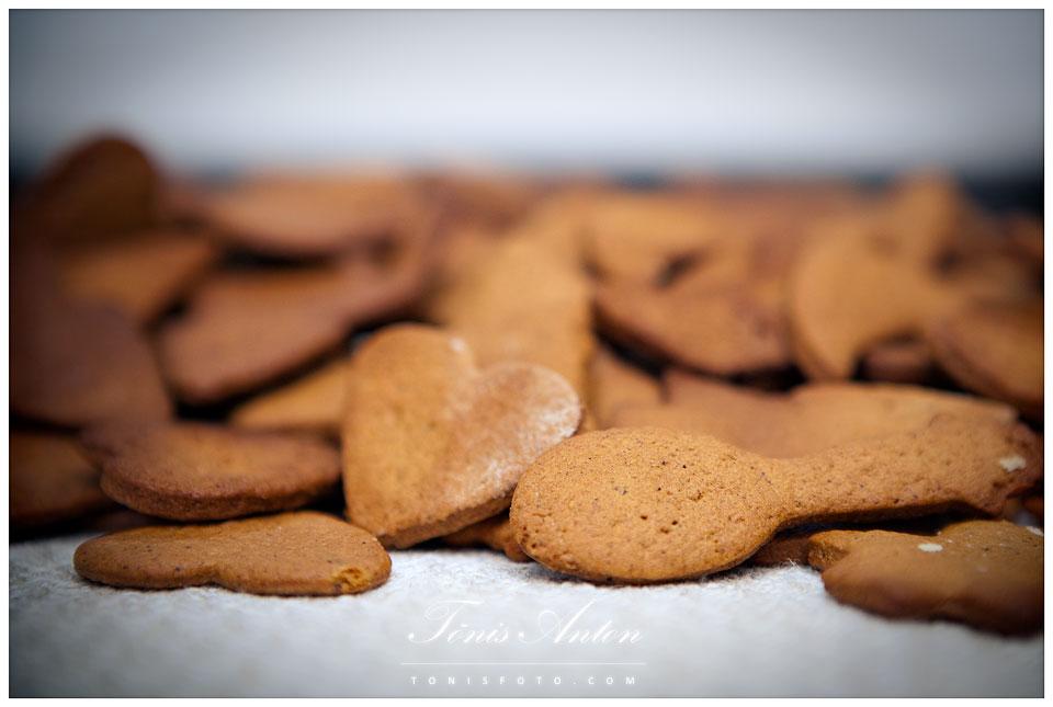 Piparkoogitegu