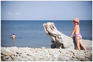 A Day at the Beach | Rannaidüll